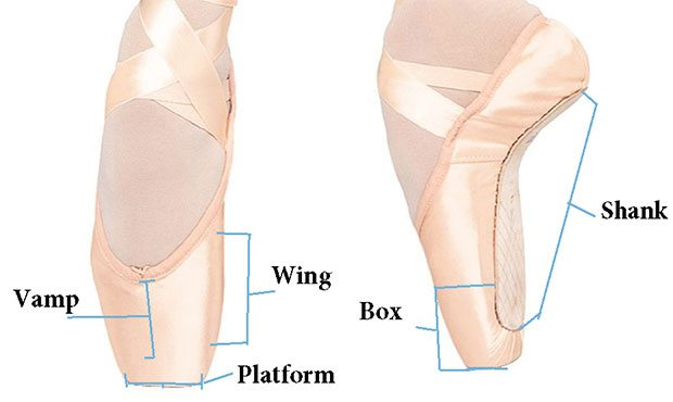 Tips for Buying Pointe Shoes - San Antonio Ballet