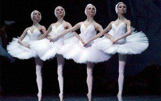 Ballet Lessons Swan Lake